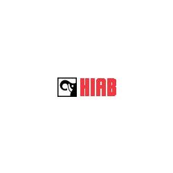 HIAB Cranes, UAE
